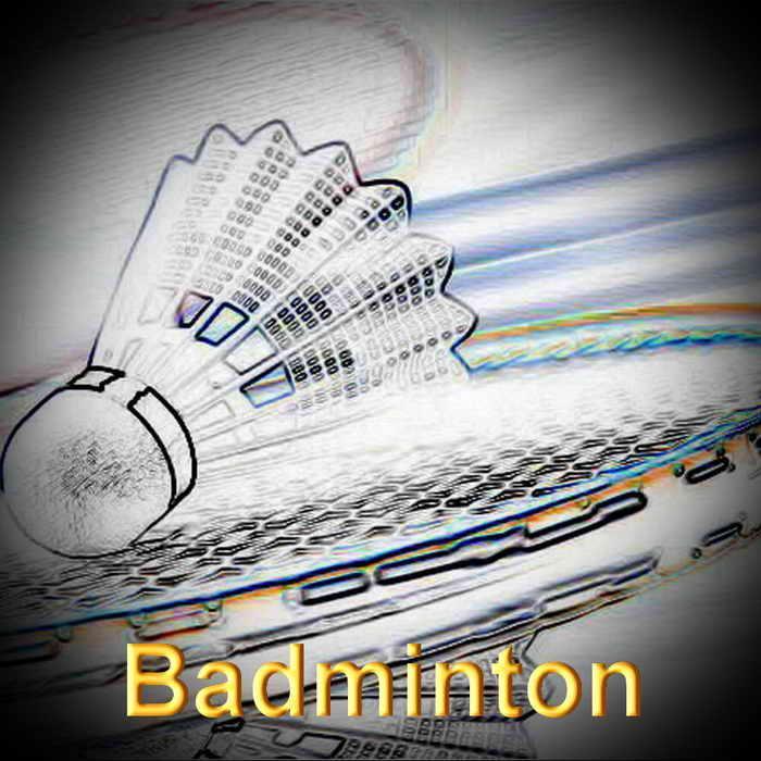 Badminton redimensionner 2