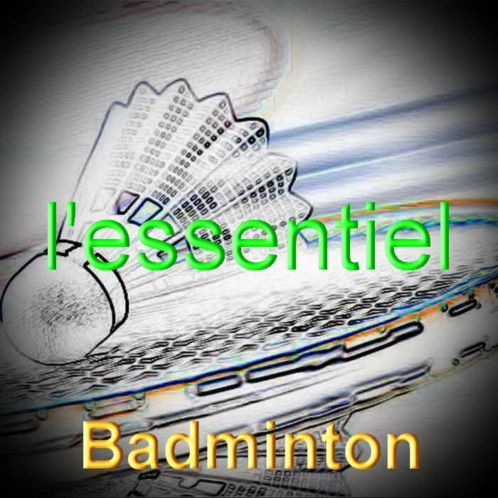 Badminton redimensionner 3