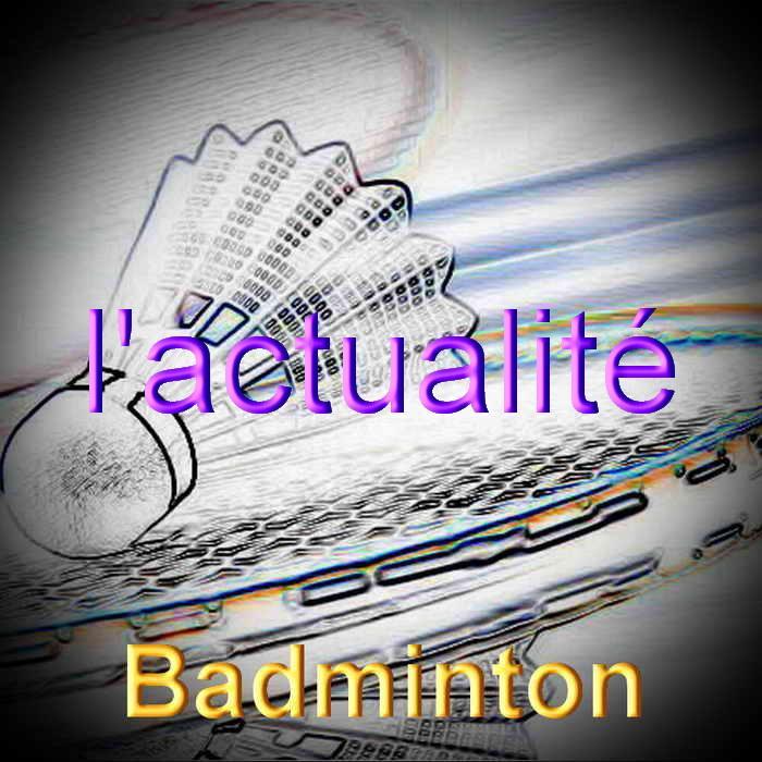 Badminton redimensionner 4