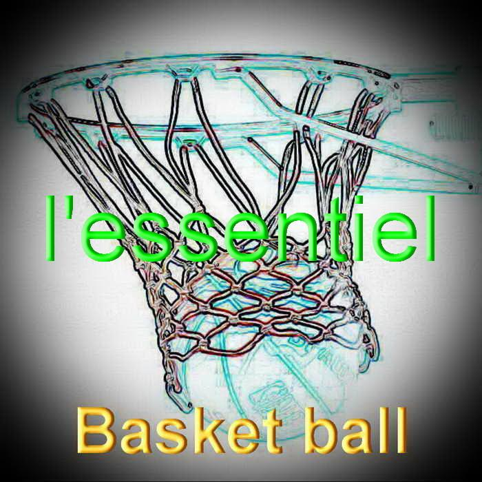 Basket ball redimensionner 2