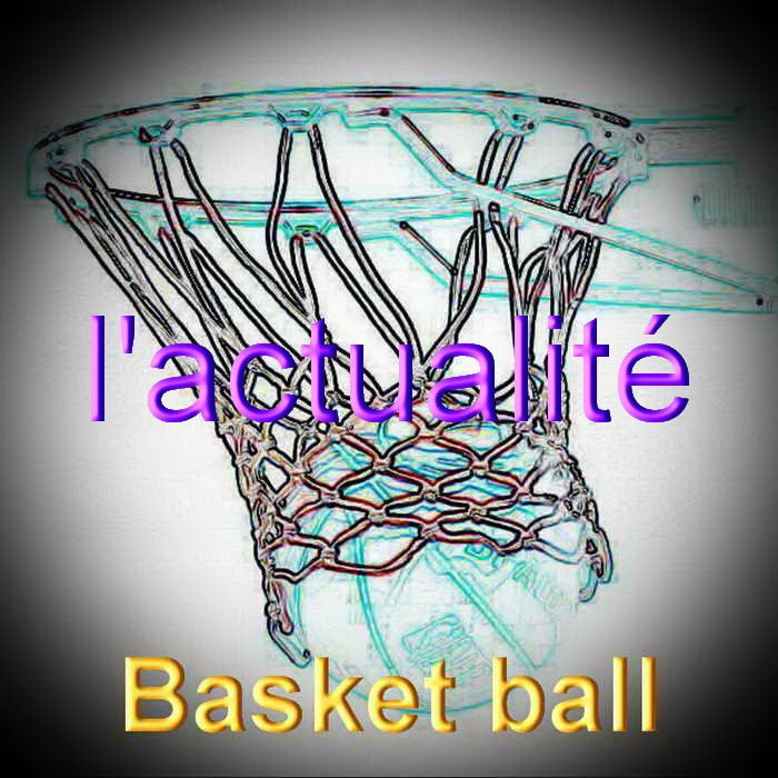 Basket ball redimensionner 3