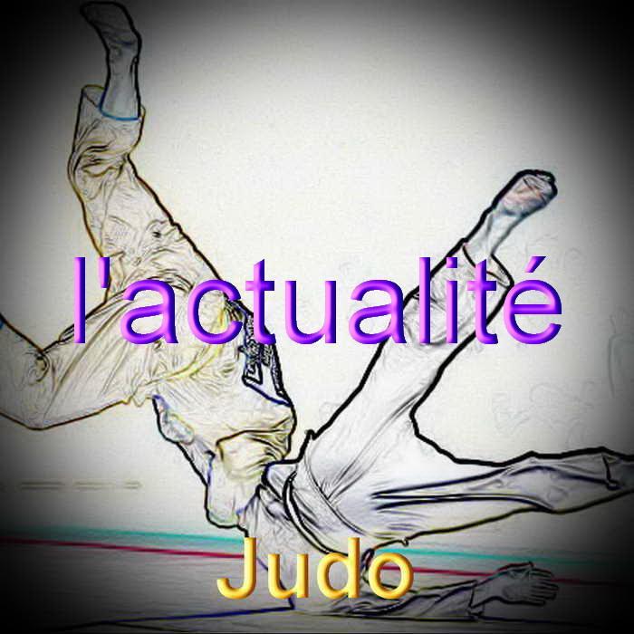Judo redimensionner 3