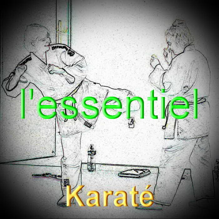 Karate redimensionner 1
