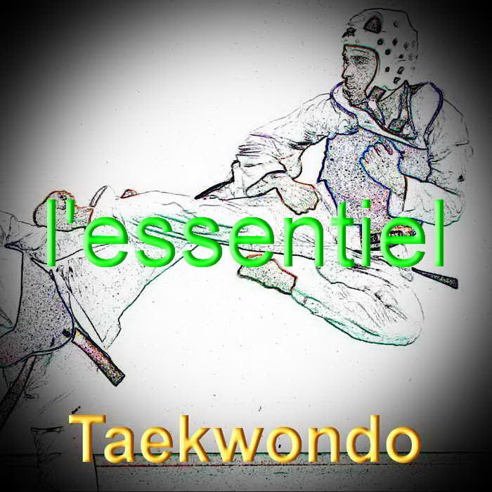 Taekwondo redimensionner 1