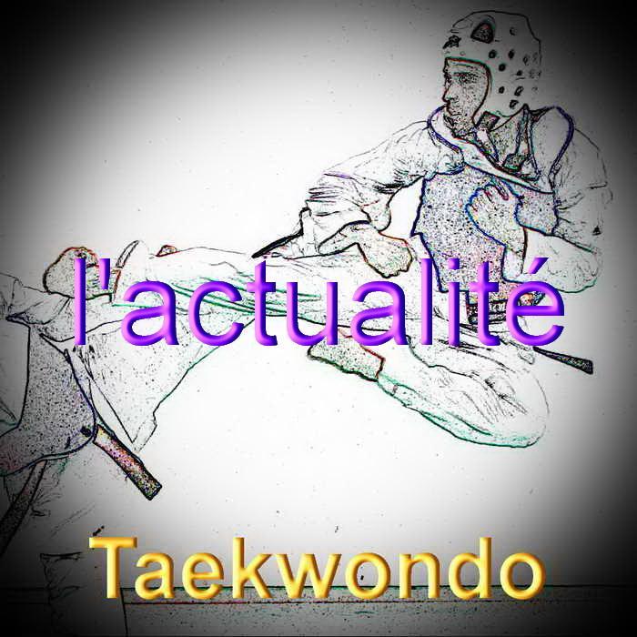 Taekwondo redimensionner 2