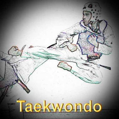 Taekwondo redimensionner