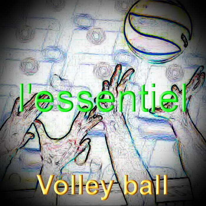 Volley ball redimensionner 2